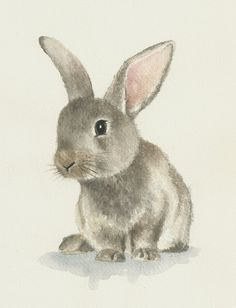 Drawn rabbit baby animal Etsy watercolor Ddrawings by on