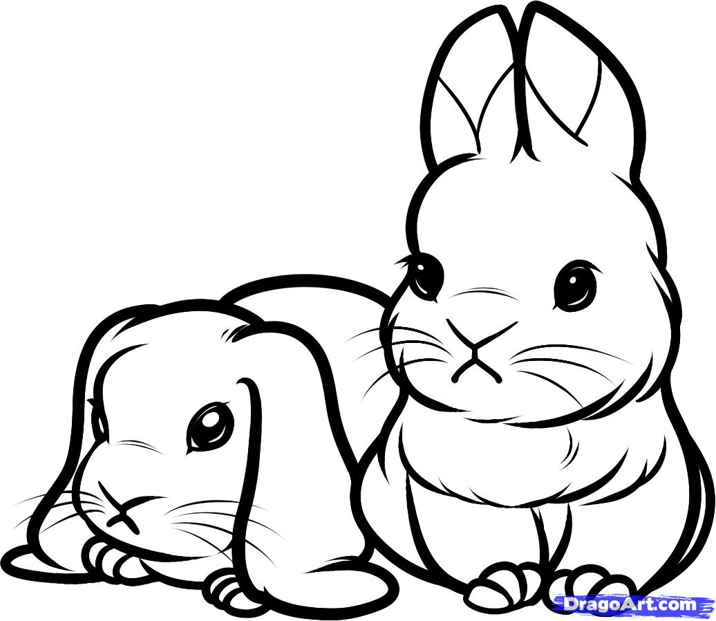 Drawn rabbit baby bunny Baby forest Step How Draw