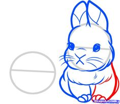 Drawn rabbit baby bunny Face Bunny a rabbits Draw
