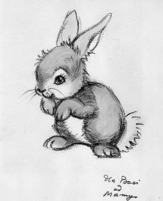 Drawn rabbit baby bunny Bunny Baby Google and drawing