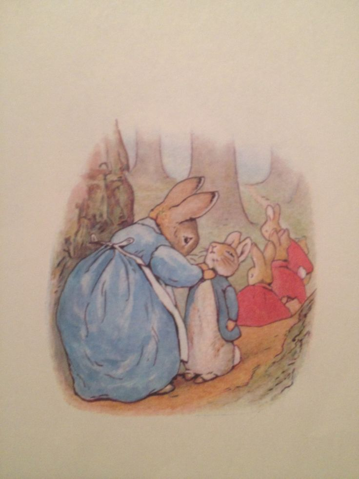 Drawn rabbit baby peter On Beatrix classic of storybook