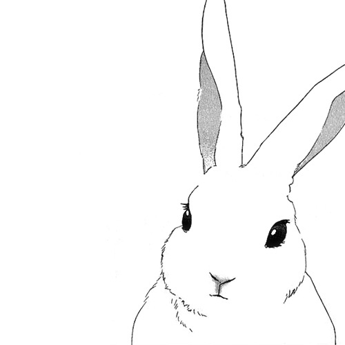 Drawn rabbit basic Children's on draw Art easy