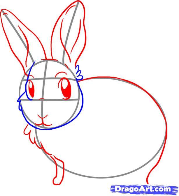 Drawn rabbit bunny ear A 3 animals to to