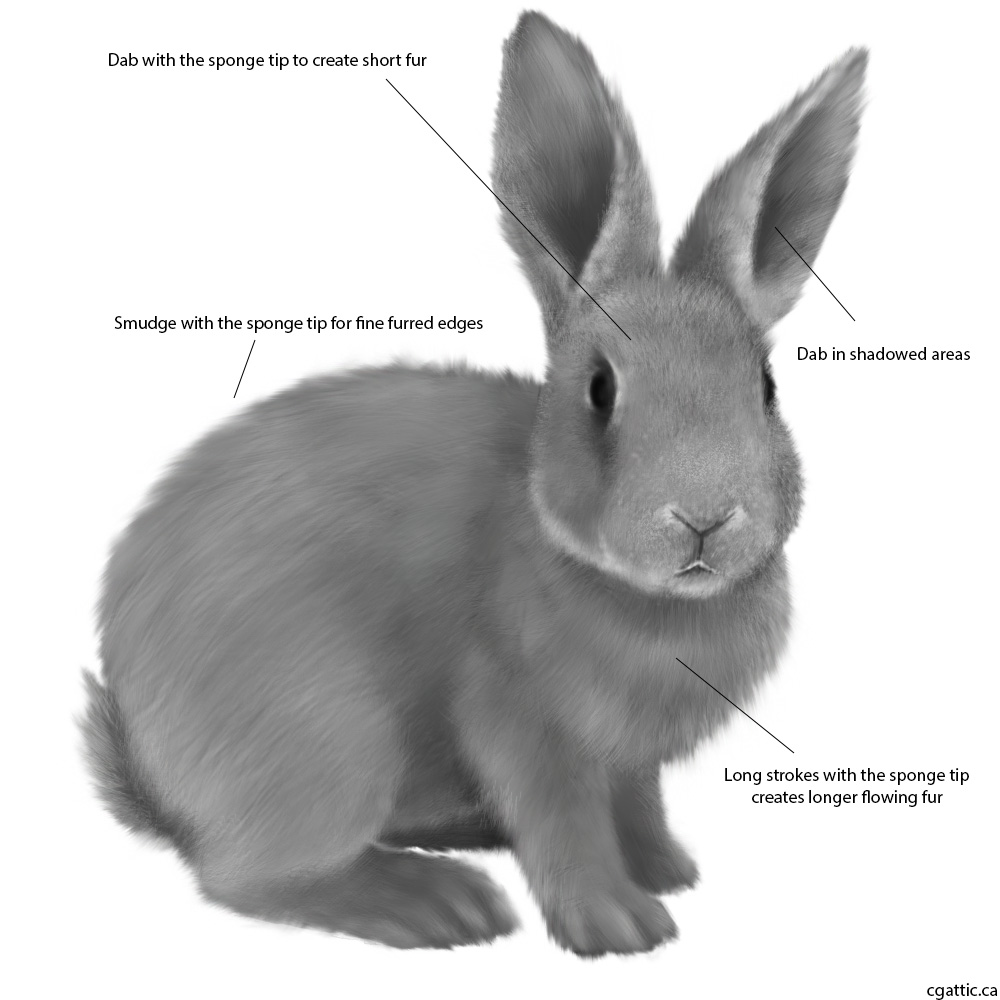 Drawn rabbit color ! a How to A