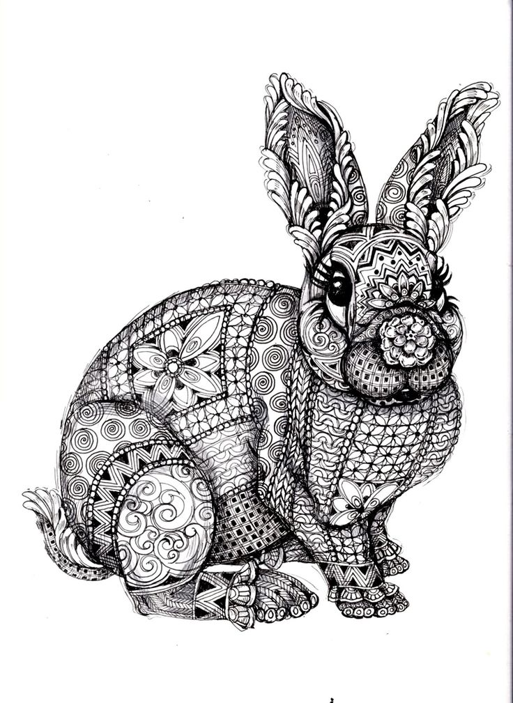 Drawn rabbit color «coloring print page free rabbit