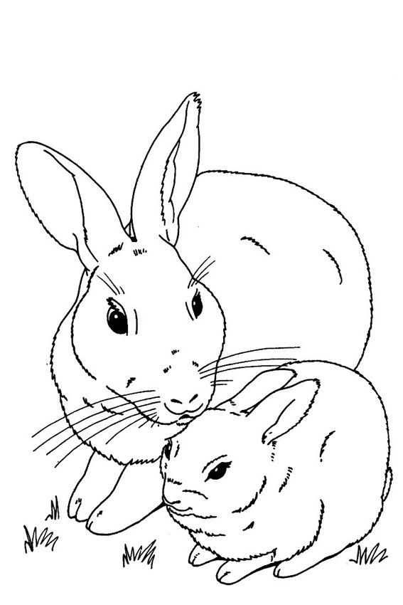 Drawn rabbit coloring page Coloring in of page some