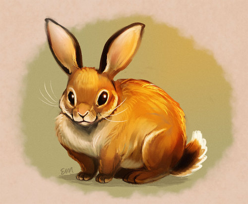 Drawn rabbit cottontail rabbit Sort twitter subject Tumblr I'm