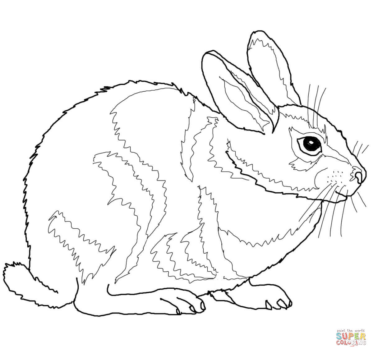 Drawn rabbit cottontail rabbit Printable Cottontail Free Eastern page
