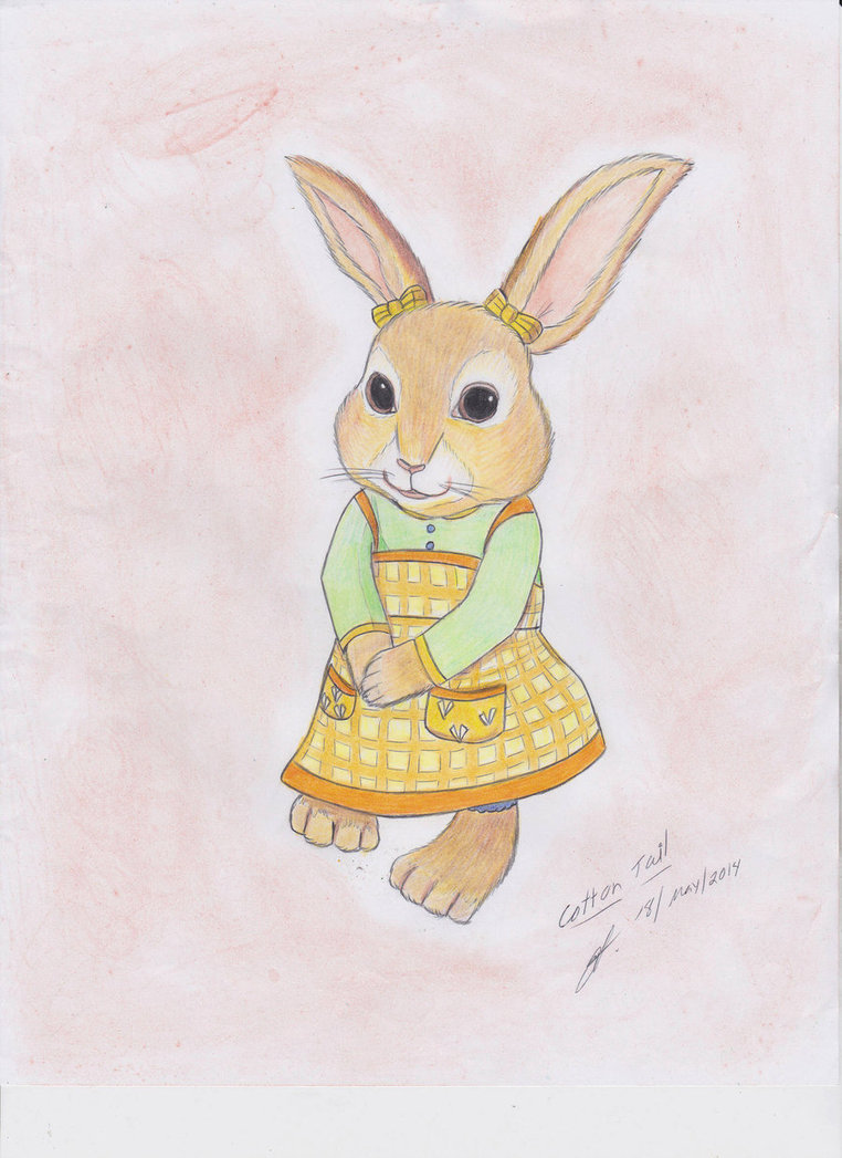 Drawn rabbit cottontail rabbit Tail Rabbit on Cotton Tail