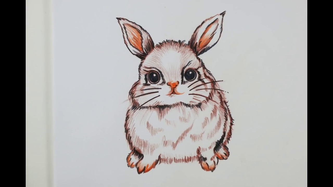 Drawn rabbit cute bunny YouTube a to Learn a