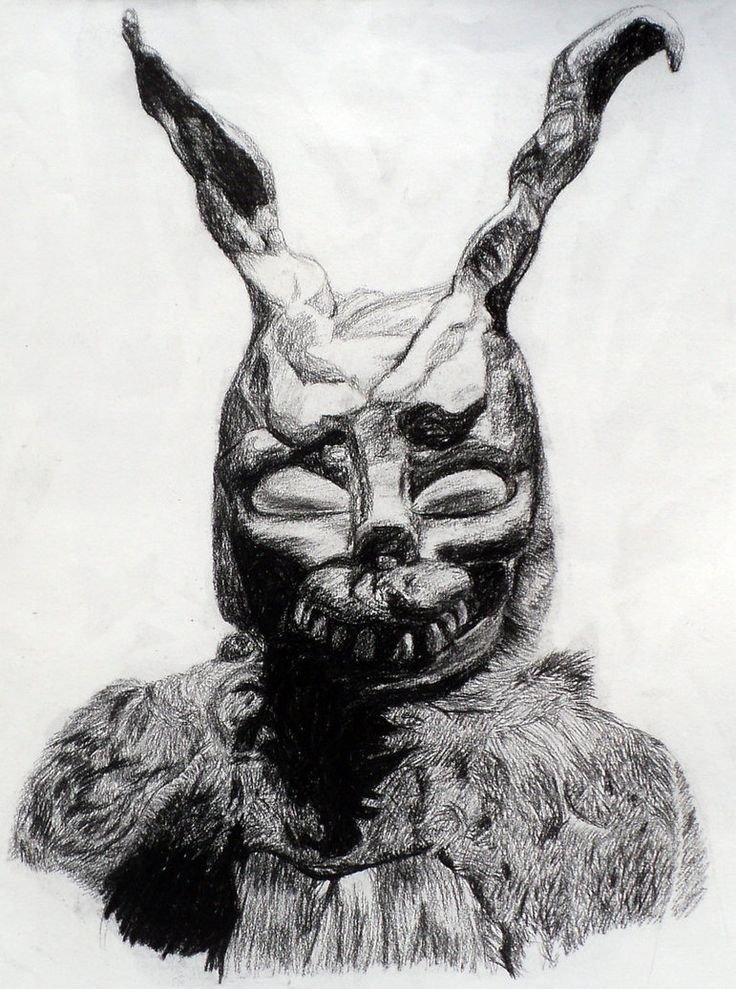 Drawn rabbit donny Rabbit paintings ideas seen on