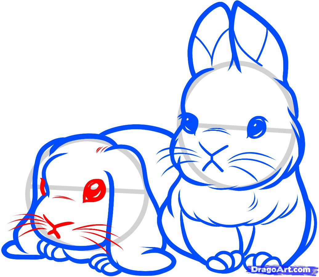 Drawn rabbit face Baby DRAWING draw Bunny Page
