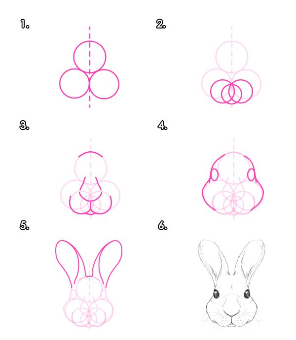 Drawn rabbit family drawing Hares How on Draw Design