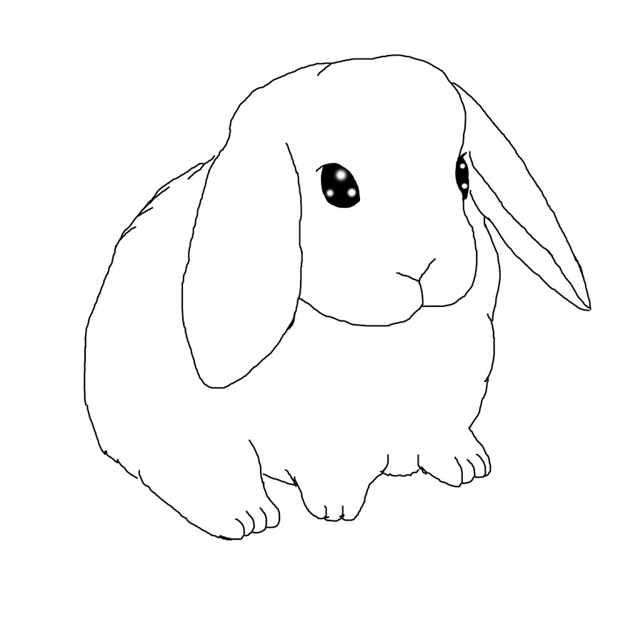 Drawn rabbid floppy eared bunny Drawings of Photos Best a