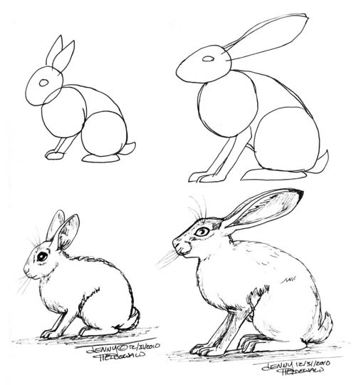 Drawn rabbit hare Zine may to how and