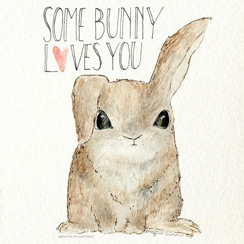 Drawn rabbit ink And Bunny more on this