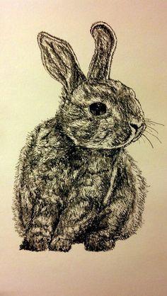 Drawn rabbit ink Illustration and black rabbit rabbit