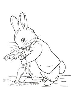 Drawn rabbid peter rabbit Pinteres… peter rabbit … …