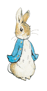 Drawn rabbit peter rabbit About incredible across about scroll