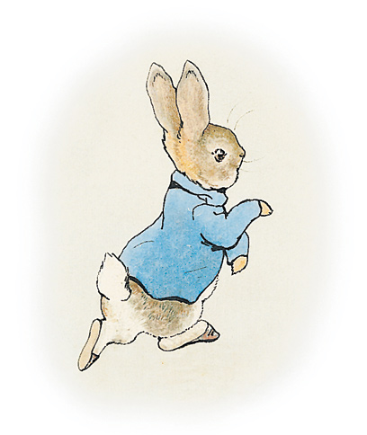 Drawn rabbid peter rabbit Tale Rabbit Beatrix Potter: Peter