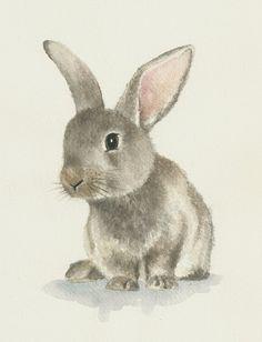 Drawn rabbit realistic Botany watercolor watercolor Ddrawings original