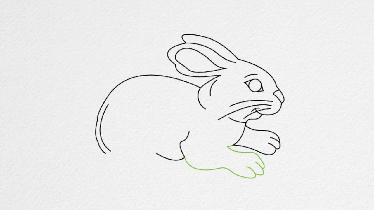 Drawn rabbid simple How RABBIT by step step