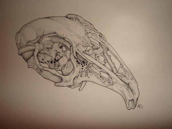 Drawn rabbit skull Hardcore by Skull Rabbit hardcore