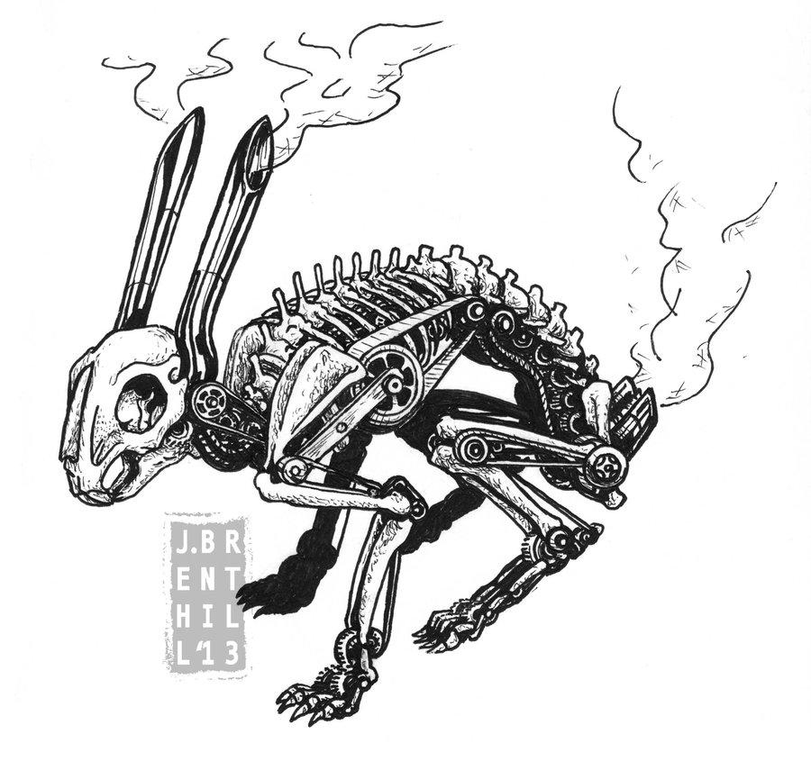 Drawn rabbit skull By Skeleton Rabbit Mechanized Bunnies