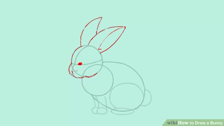 Drawn rabbit small Image 4 Steps wikiHow Pictures)