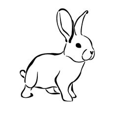 Drawn rabbit small Bunny carriephlyons Drawing deviantart Bunny