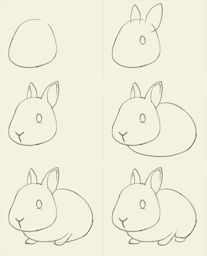 Drawn rabbit step by step To How to bunny Best