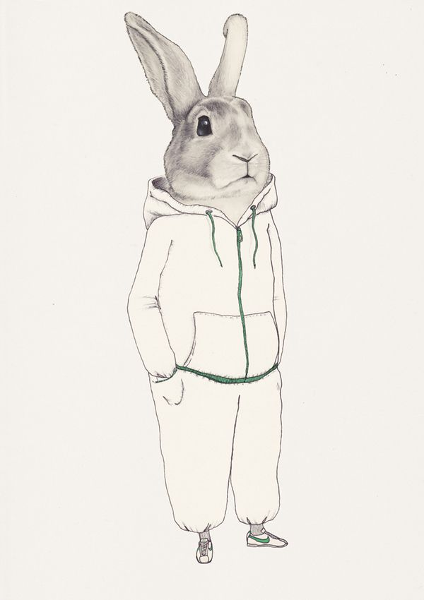 Drawn rabbit suit Science 170 on bunny Best