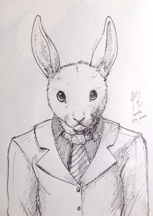 Drawn rabbit suit No Book used reason in