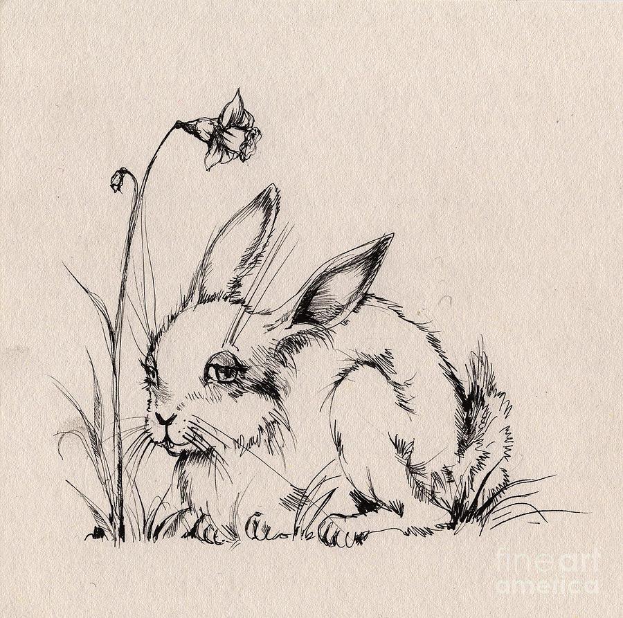 Drawn rabbit sweet bunny Drawings Bunny Angel Fine Tarantella