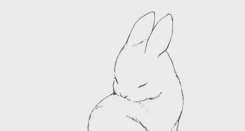 Drawn rabbit sweet bunny Jpg tumblr_mppbphiO4z1r9gsedo1_500