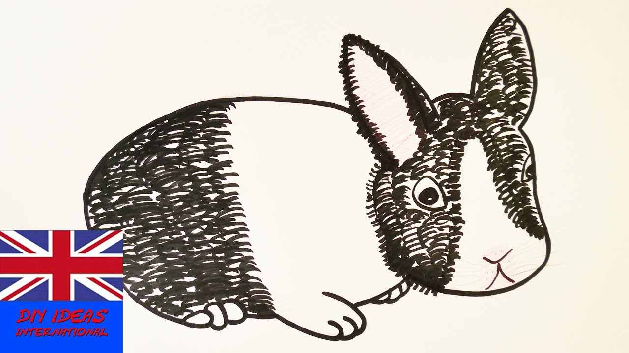 Drawn rabbit sweet bunny Draw sweet a to Learn