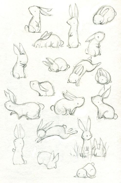 Drawn rabbit sweet bunny Bunny and images on /