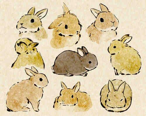 Drawn rabbit sweet bunny Bunnies Love Watercolour paintings Disney