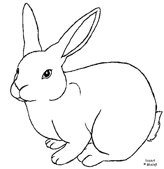 Drawn rabbit template Single deviantart deviantart template rabbit