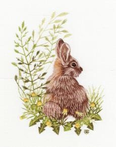 Drawn rabbit wild rabbit Of Progress  a Painting