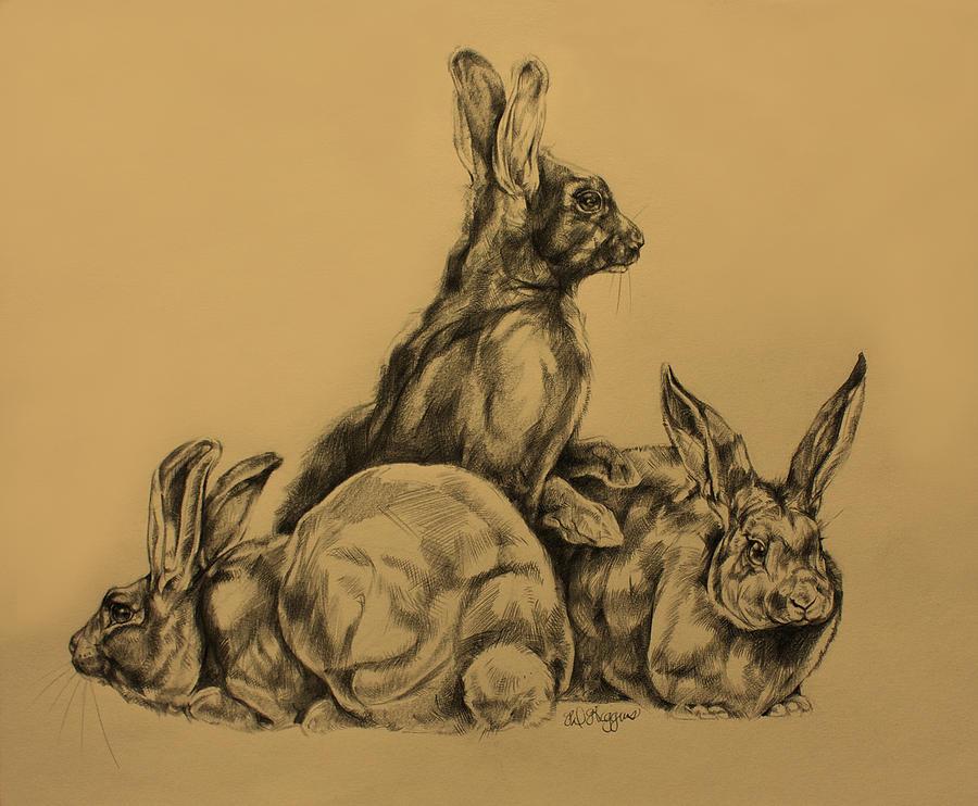 Drawn rabbit wild rabbit America Drawing Rabbit Art Wild