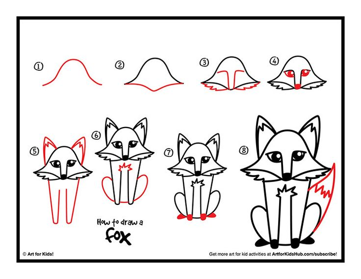 Drawn raccoon art for kid hub How on best For Draw