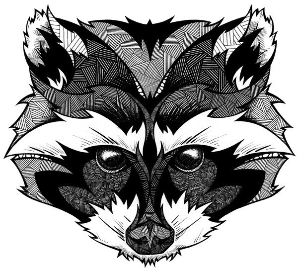 Drawn raccoon head On images Andreas face Pinterest