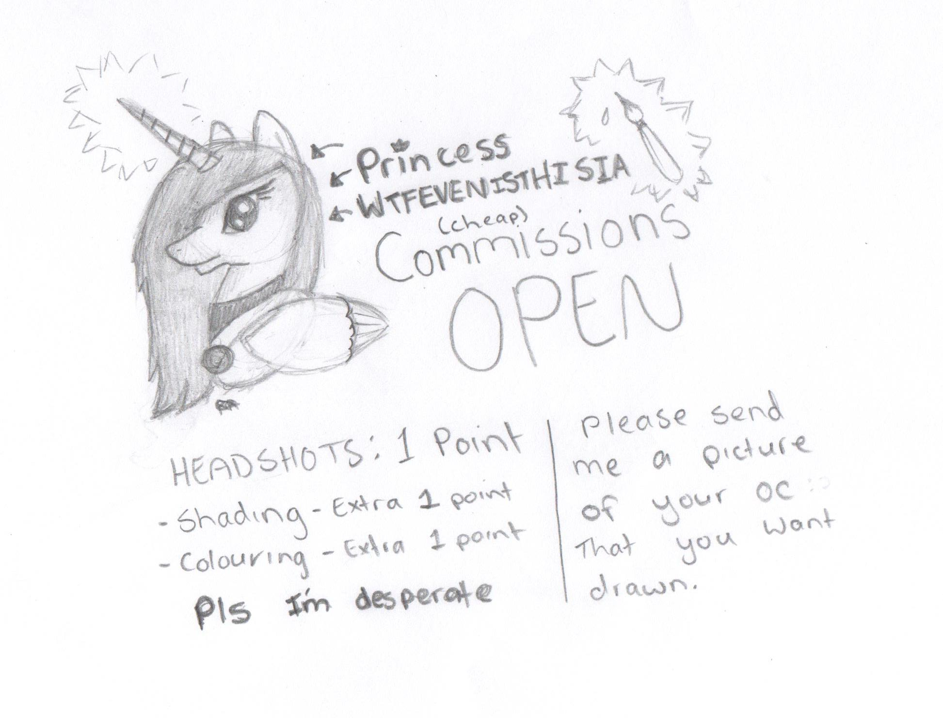 Drawn raccoon mlp MLP by COMMISSIONS COMMISSIONS MLP