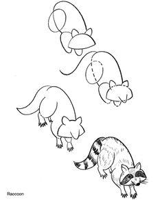 Drawn raccoon simple  to Raccoon Draw Pinterest