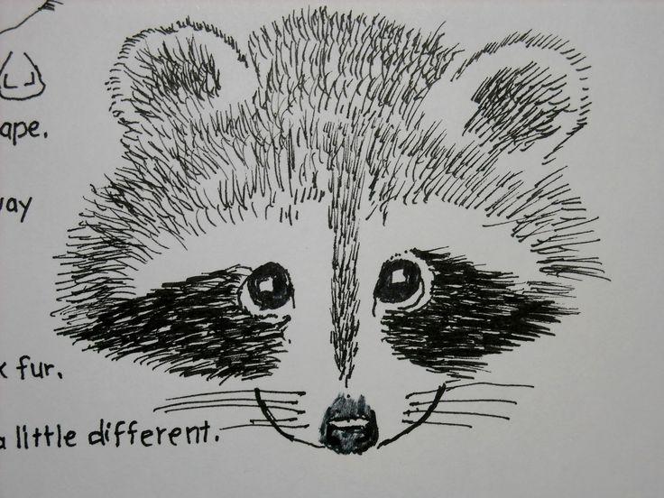 Drawn racoon baby raccoon Di Ellen RACCOONS su Semplice