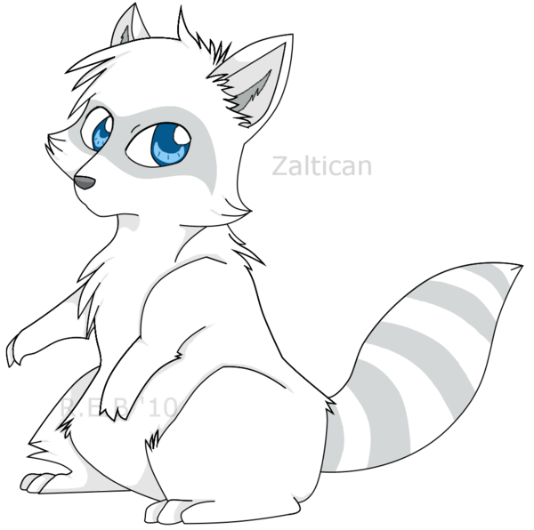 Drawn raccoon chibi DeviantArt by on Racoon comission
