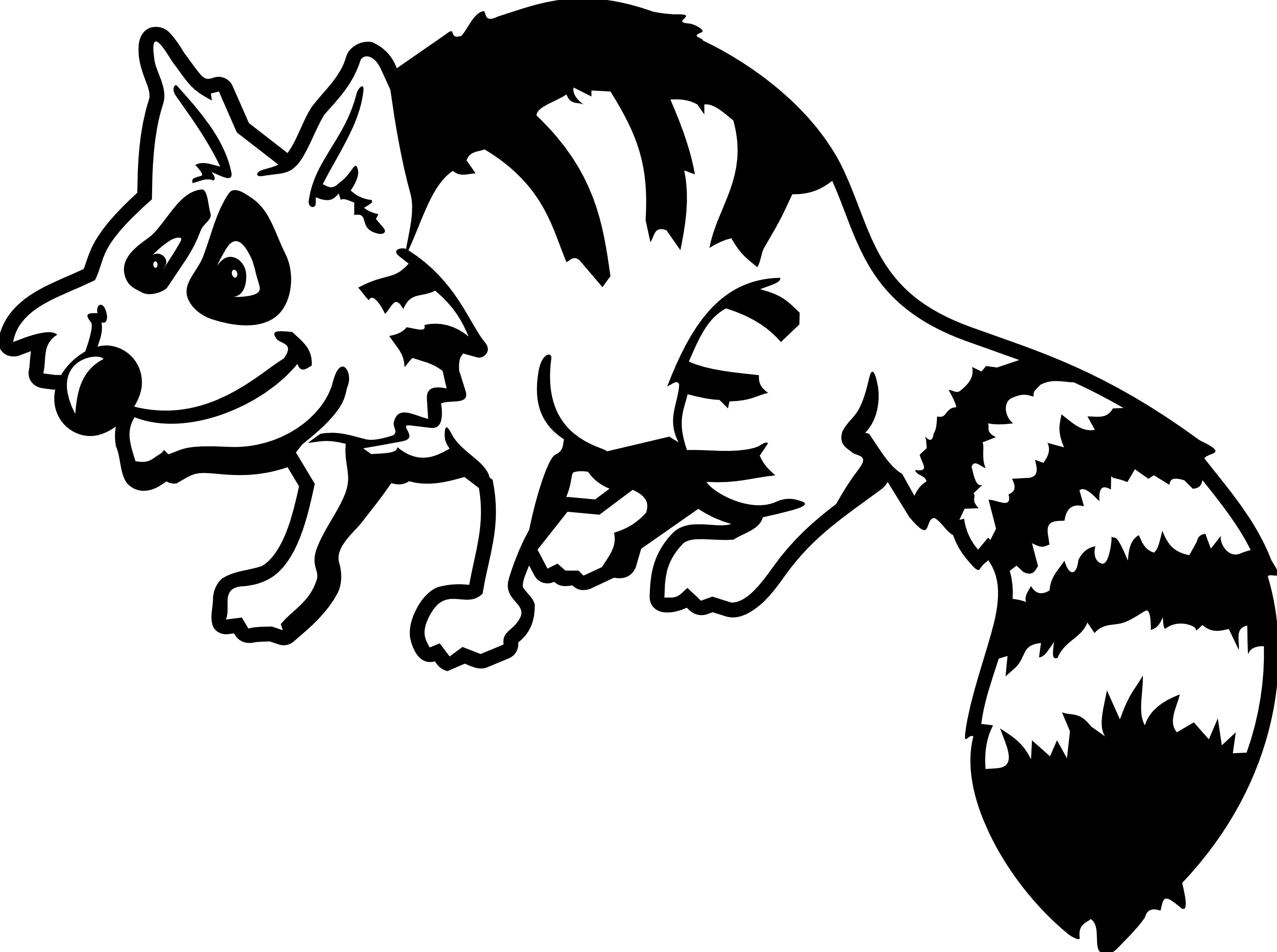 Drawn raccoon clipart Raccoon%20clipart%20black%20and%20white Panda Clipart White Images