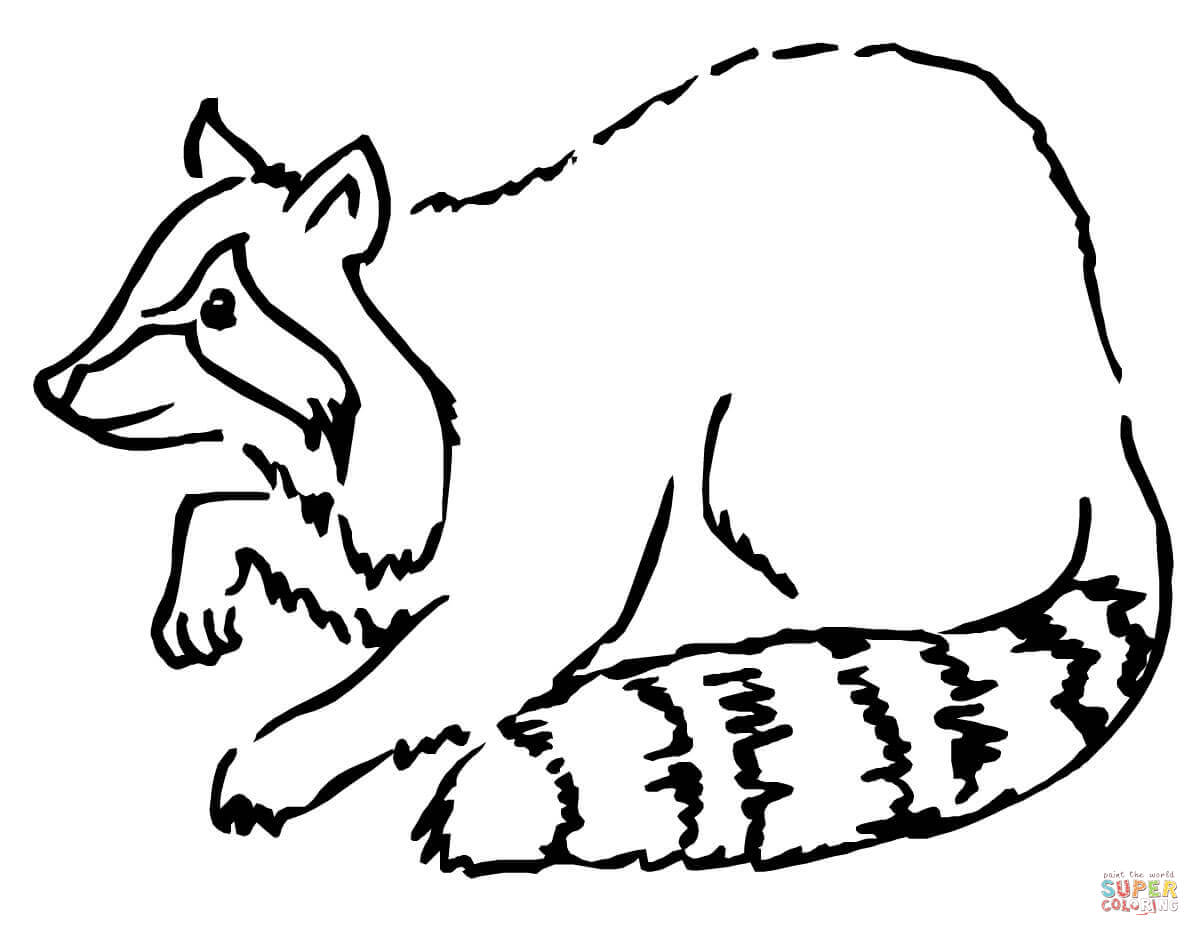 Drawn raccoon super simple Coloring coloring pages raccoon Free