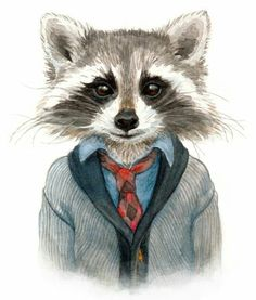 Drawn racoon cute  illustration raccoon buckland jenn